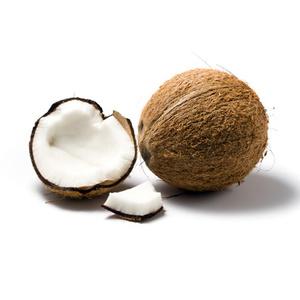 coconut.jpgのサムネール画像