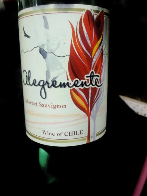 チリ産ワイン.jpg